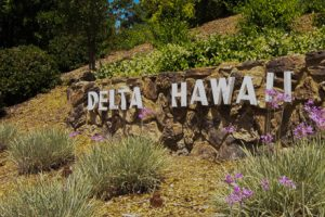 Delta Hawaii Wall Sign