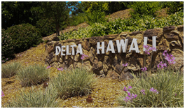 Delta Hawaii Sign Retaining Wall